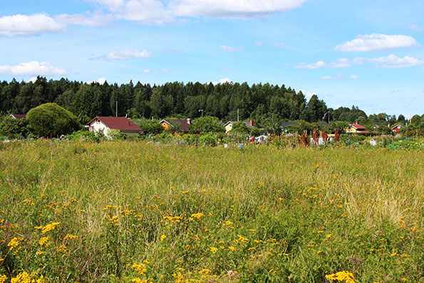 Pakilan Uimaranta